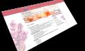 Website LS-Mediterraneebau | Gernsheim